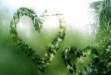 提升生态系统质量和稳定性(深入学习贯彻党的十九届五中全会精神)
